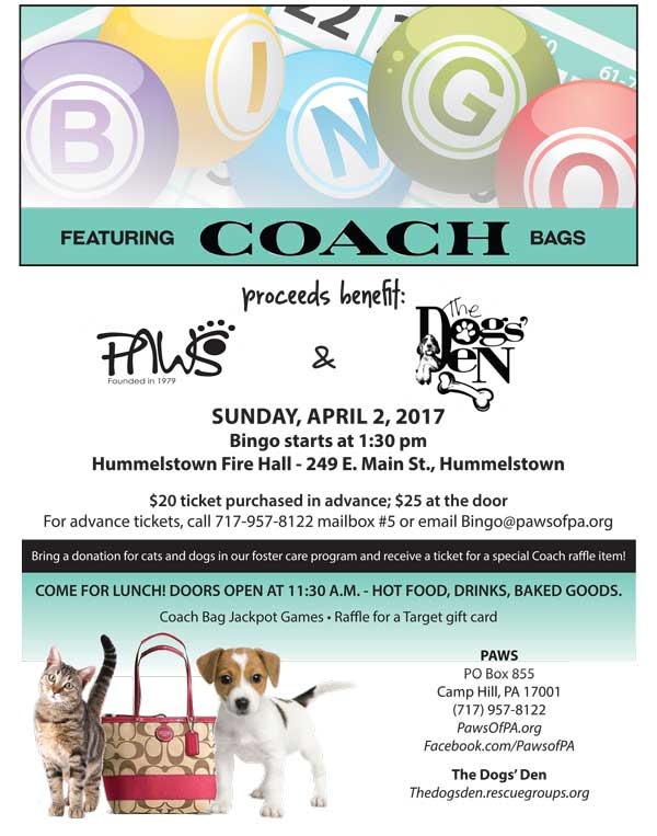 PAWSDDCoachBingoFlyer2 17